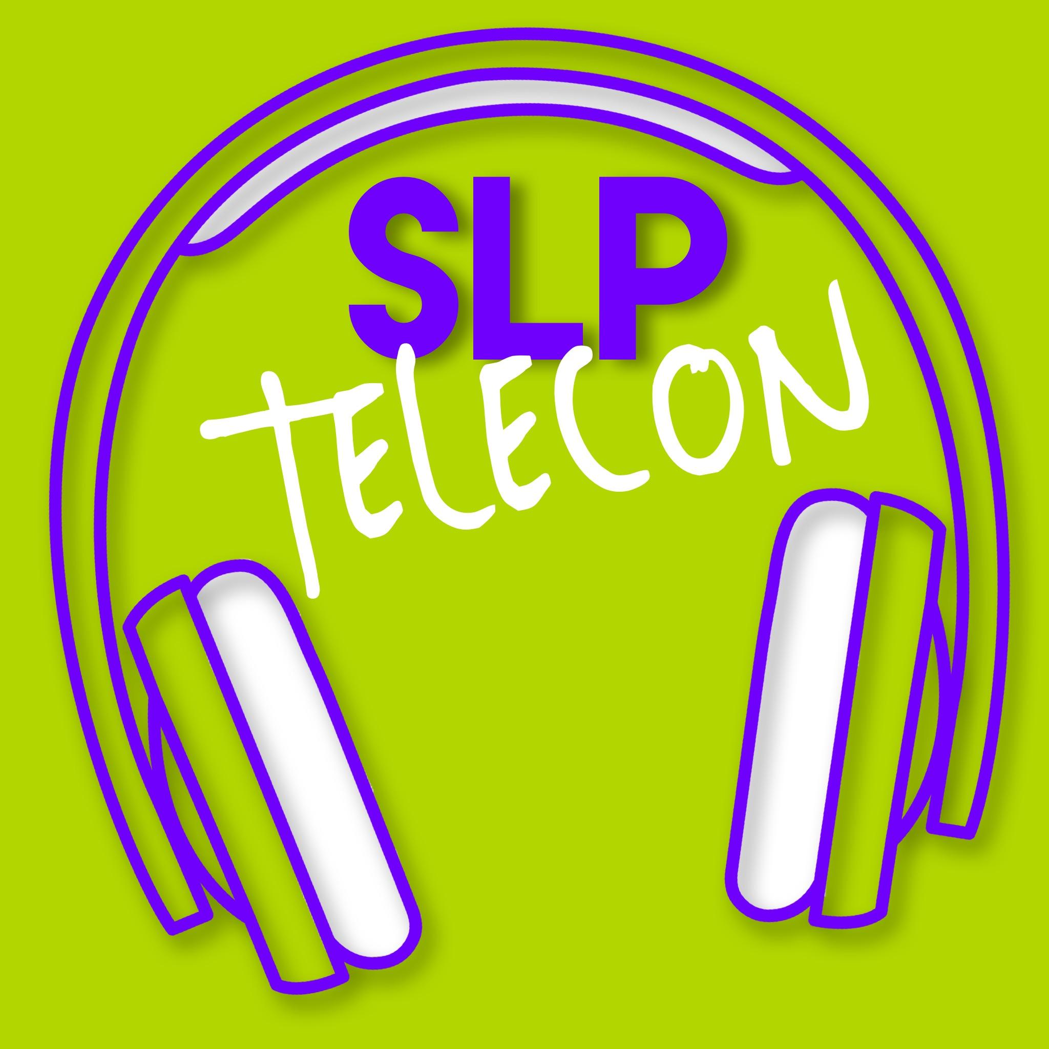 SLP Telecon
